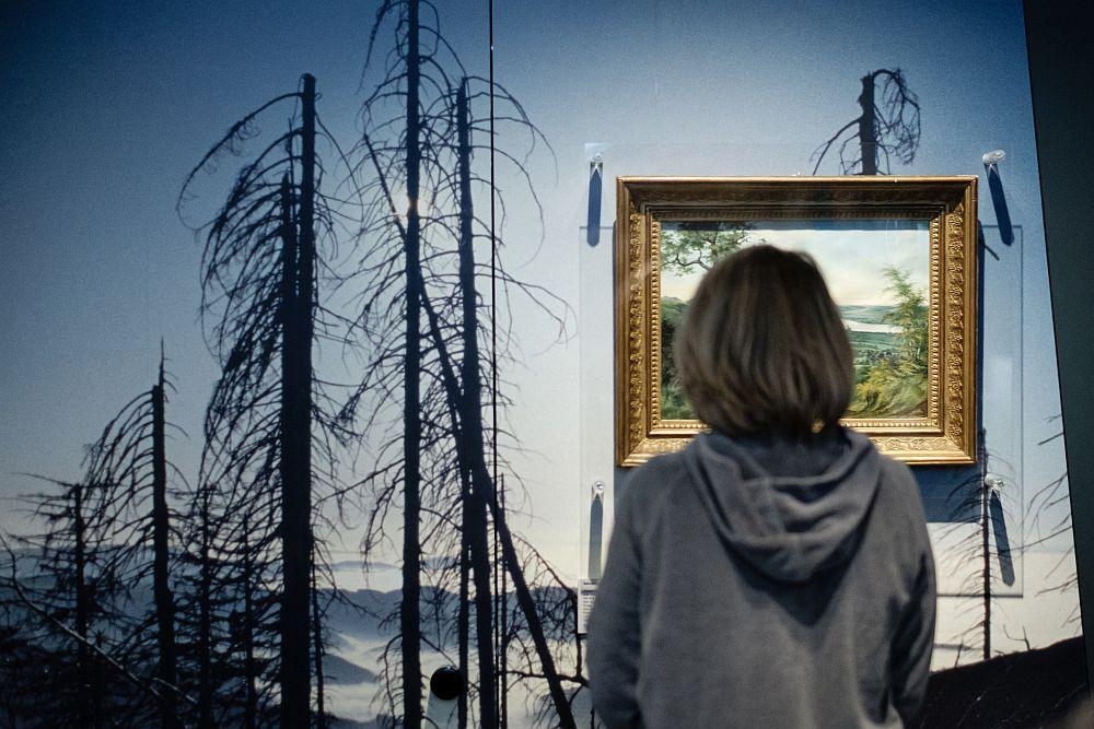 Eine Besucherin betrachtet Bilder, die sich mit dem Thema Waldsterben beschäftigen.