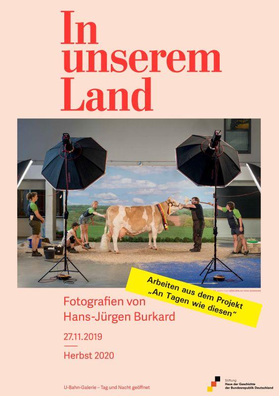 Plakat mit einem Fotomotiv, auf dem eine Kuh von Menschen rumringt in einem Fotostudio steht.