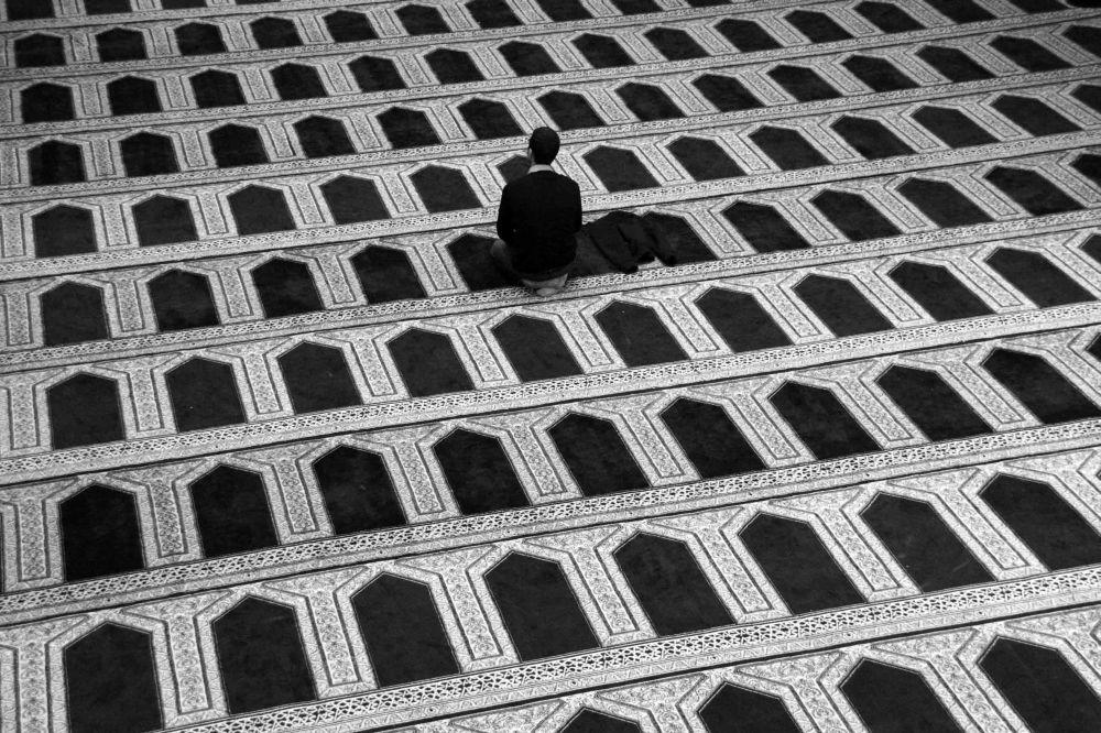 """Photo """"Auf der Suche"""" by Agata Szymanska-Medina"""